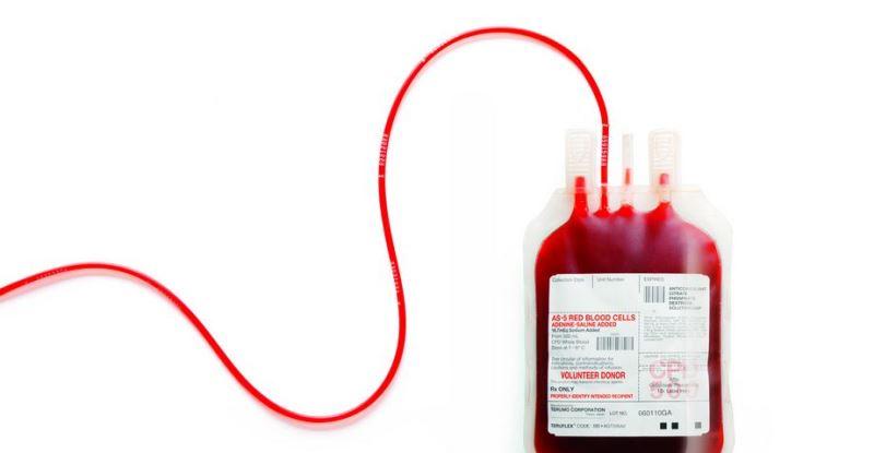 AK Parti Görele İlçe Teşkilatı kan bağışında bulundu